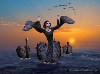 Black swans by Lubov2001