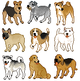 free icons by sighthounds