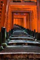 Fushimi Inari-taisha by Tim-Wilko