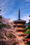 Daigo-ji Pagoda