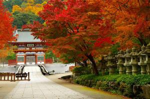 Katsuo-ji main gate by Tim-Wilko