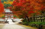Katsuo-ji main gate