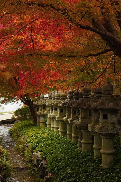 Katsuo-ji Lanterns
