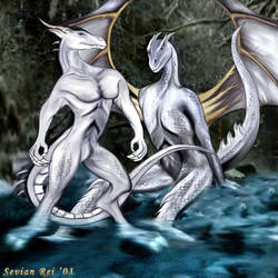 Nightfall Dragons