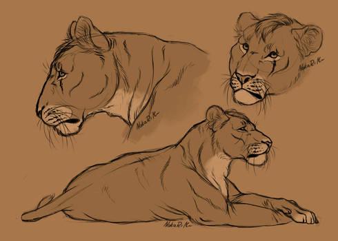 Very random Kabari sketches