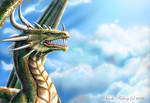 DRAGON: To Soar the Skies