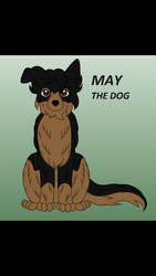 May The Dog