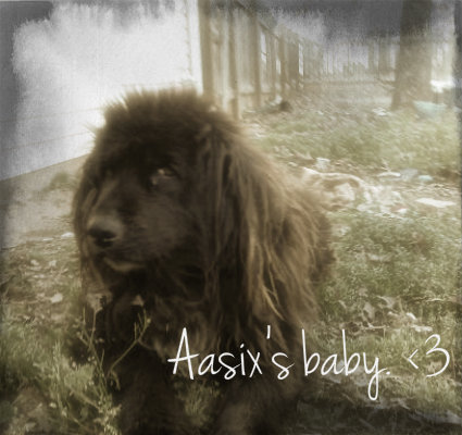 Aasix's baby. by Aasix