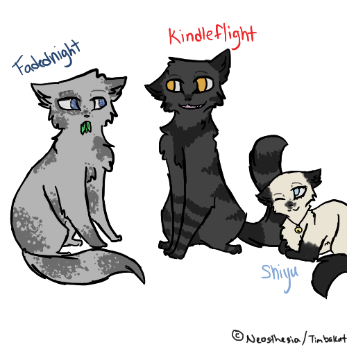 Warrior Cats Kit To Leader Bloodclan: VALLEYCLAN AND STORMCLAN ACCEPTING