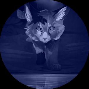 Maxwaidkaibff's Profile Picture