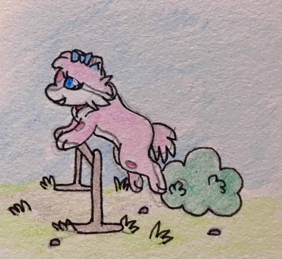 Companion Crunch - Hurdle by Anna7334
