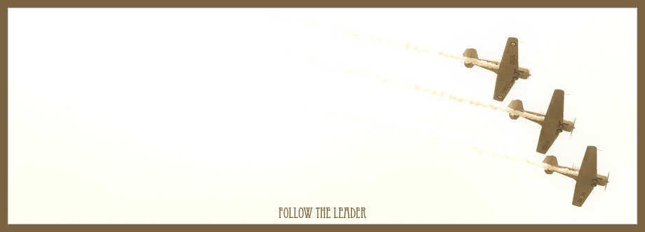 follow the leader by doverby