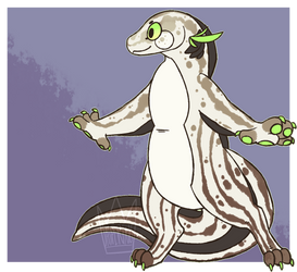 Lungfish Adoptable closed