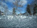 Frosty Window Veiw