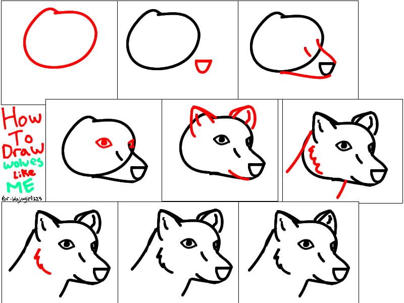 stepbystep to draw a chibi wolf by nomwolf on deviantart