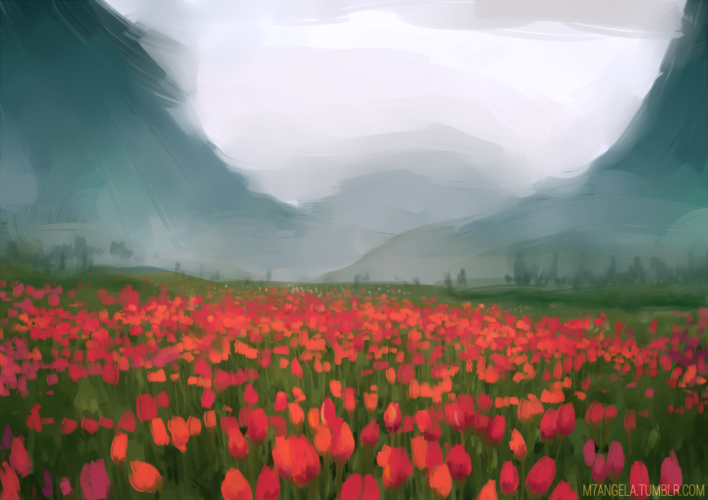Tulips by m-angela