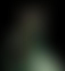 [ArtTrade] Mahogany