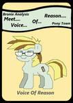 Meet Voice Of Reason