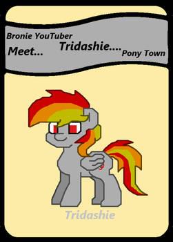 Meet Tridashie