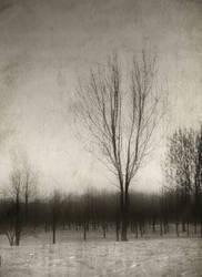 Through The Memories by AlexandrinaAna