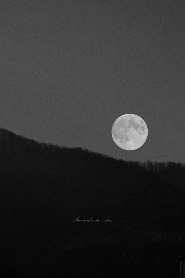 Moonromanticism by AlexandrinaAna