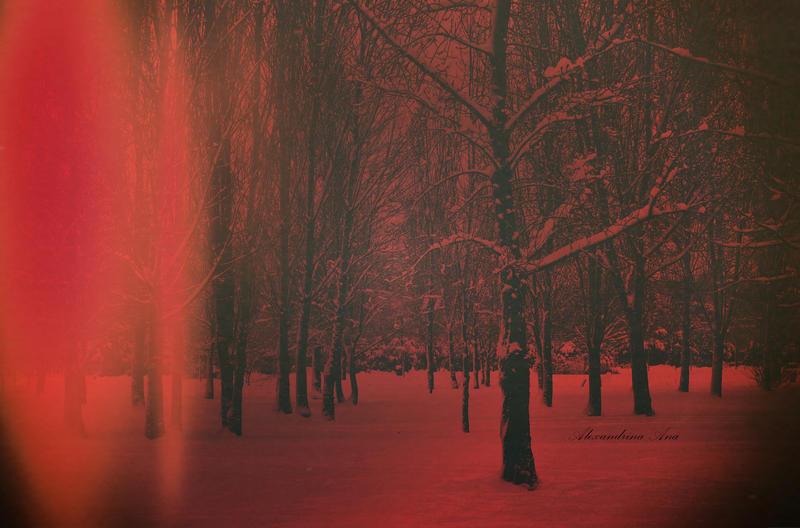 A Blood Red Dream by AlexandrinaAna