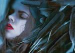 Corvus by AlexandrinaAna