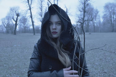The cold wind is singing its blue song by AlexandrinaAna