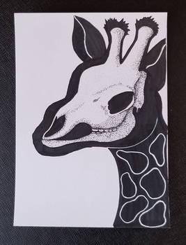 Giraffe Skullhouette