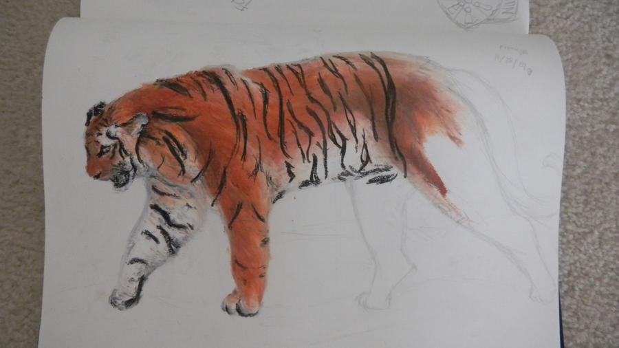 Tiger by sabakuwood