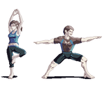 Wii Fit Trainers