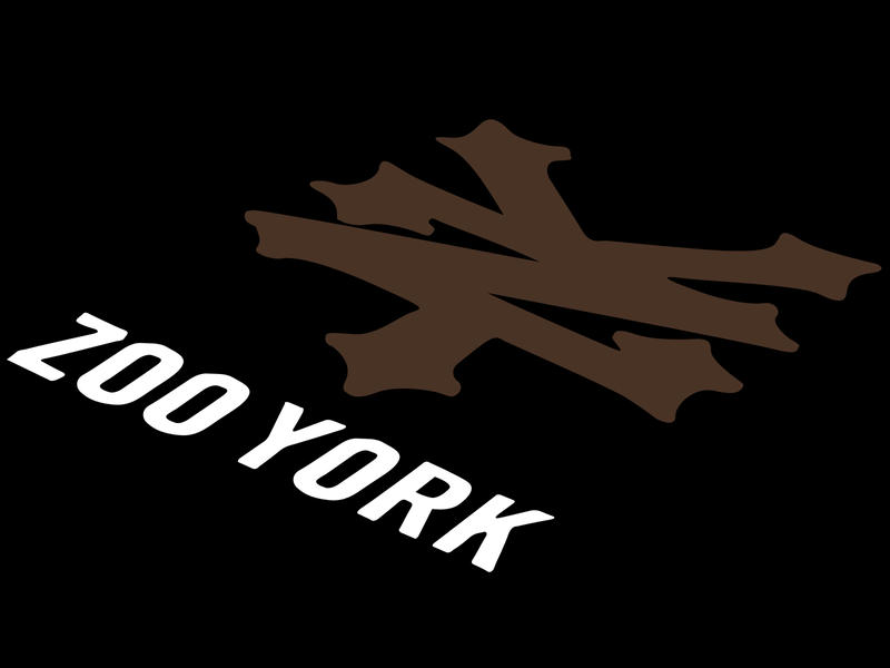 Zoo York Wallpaper 2 by joshcartledge