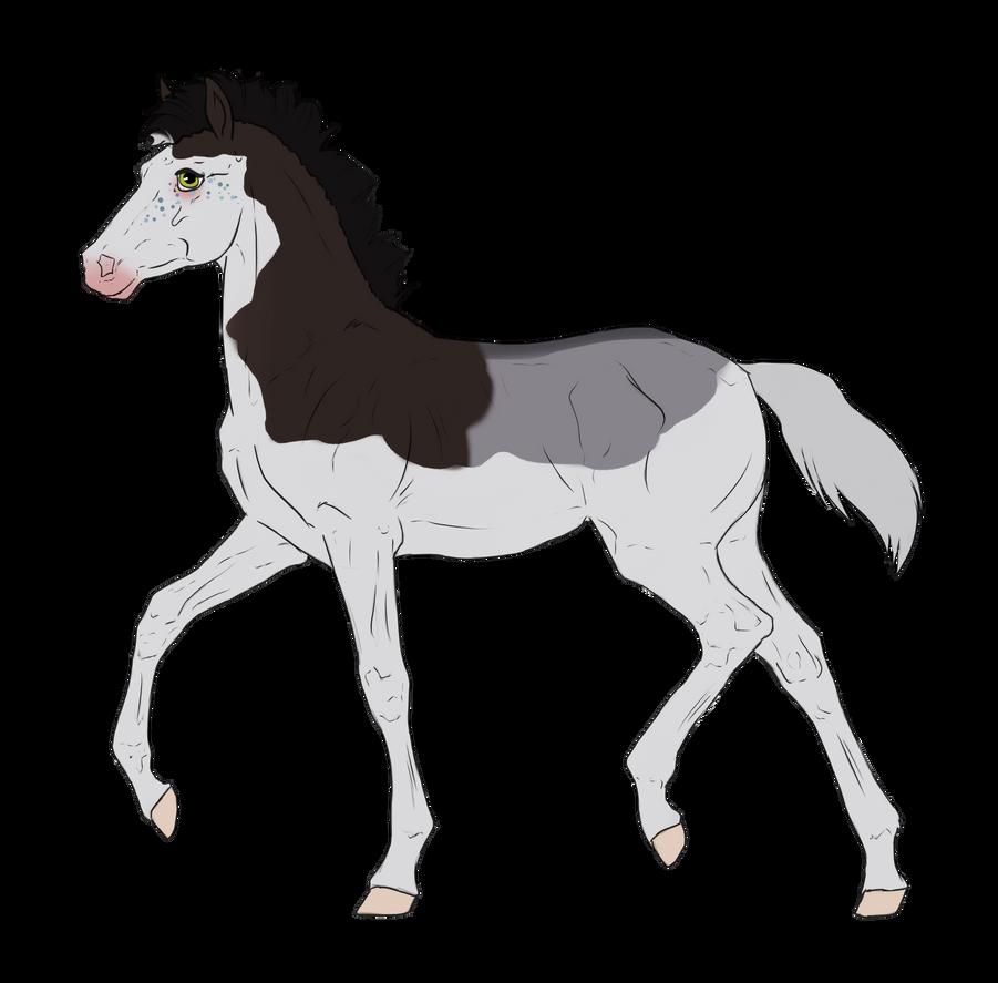 N2665 Padro Foal Design for Nightmarre-art by casinuba