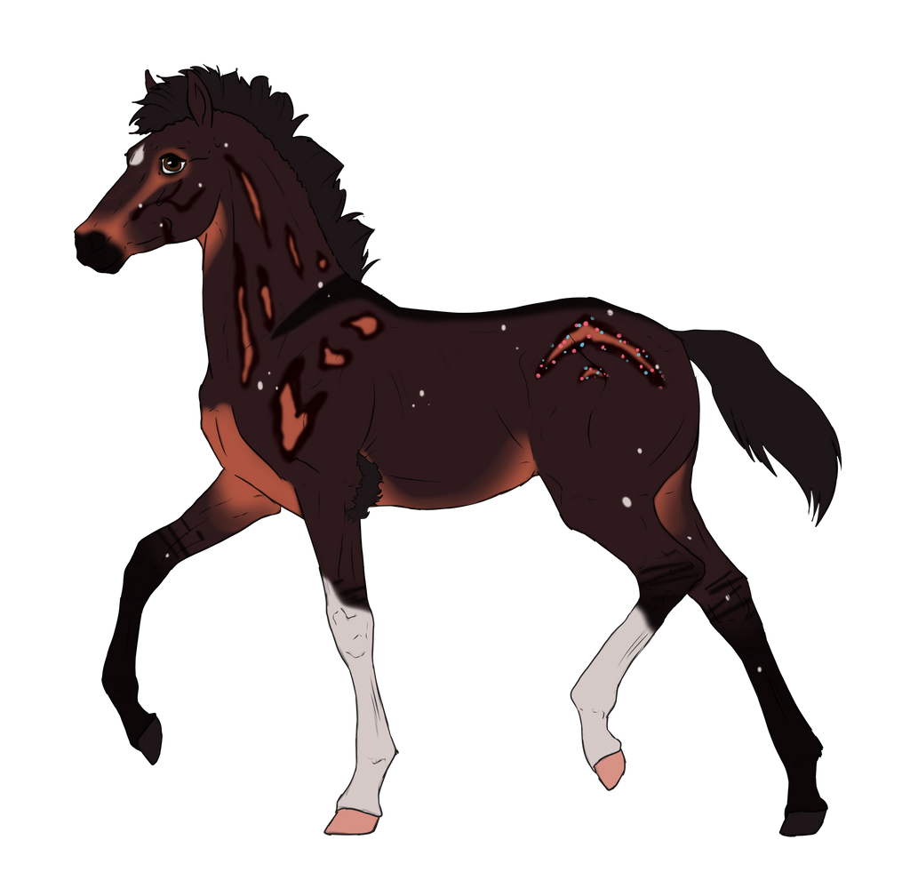 N2658 Padro Foal Design for Nightmarre-art by casinuba