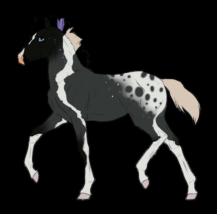 N2625 Padro Foal Design for DaniMarie223 by casinuba