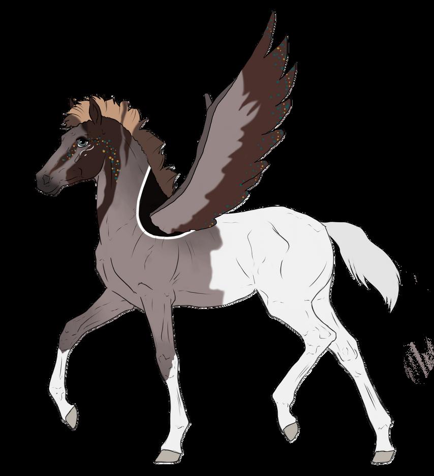 N2696 Padro Foal Design by casinuba