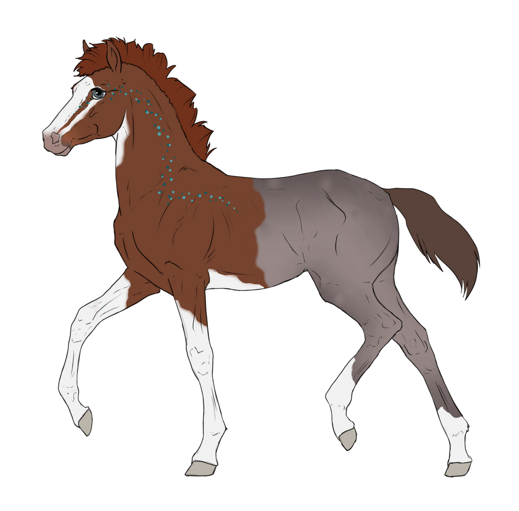 N2697 Padro Foal Design by casinuba