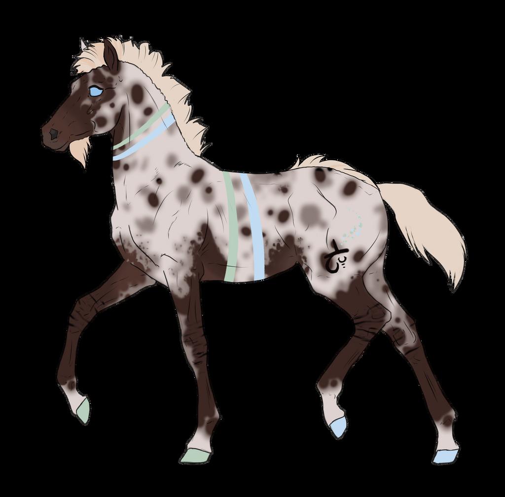 N2839 Padro Foal Design by casinuba