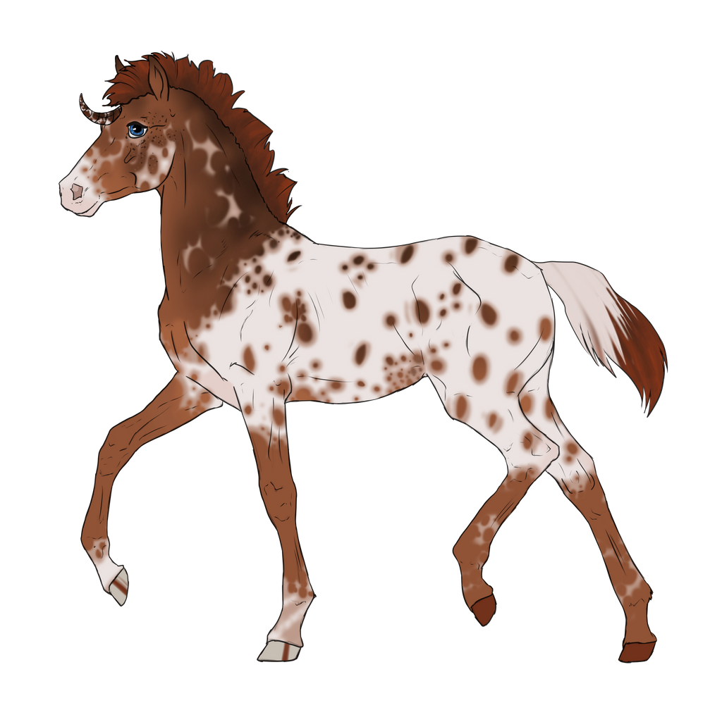 N2840 Padro Foal Design by casinuba
