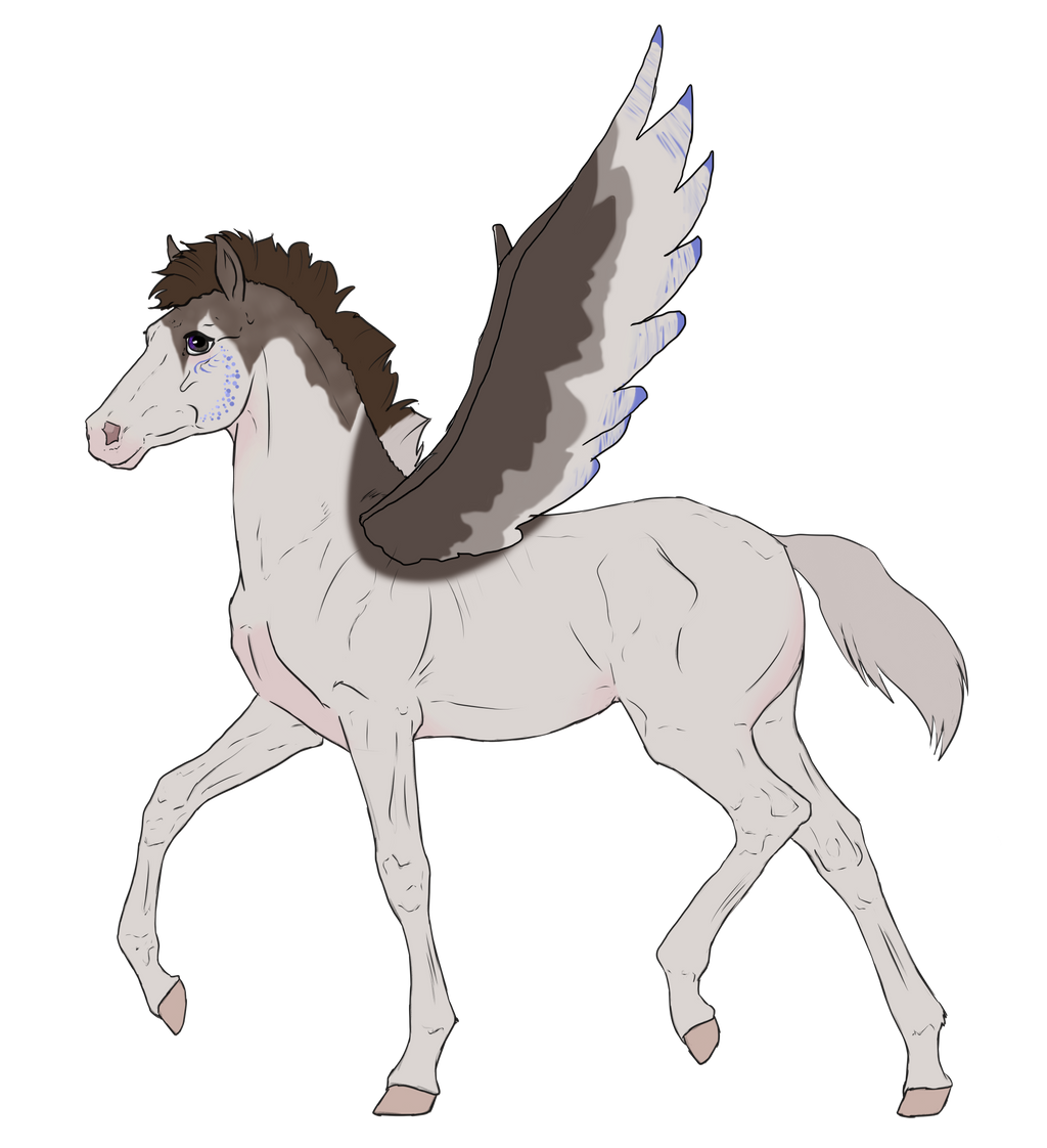 N2808 Padro Foal Design for MistMasquerade by casinuba