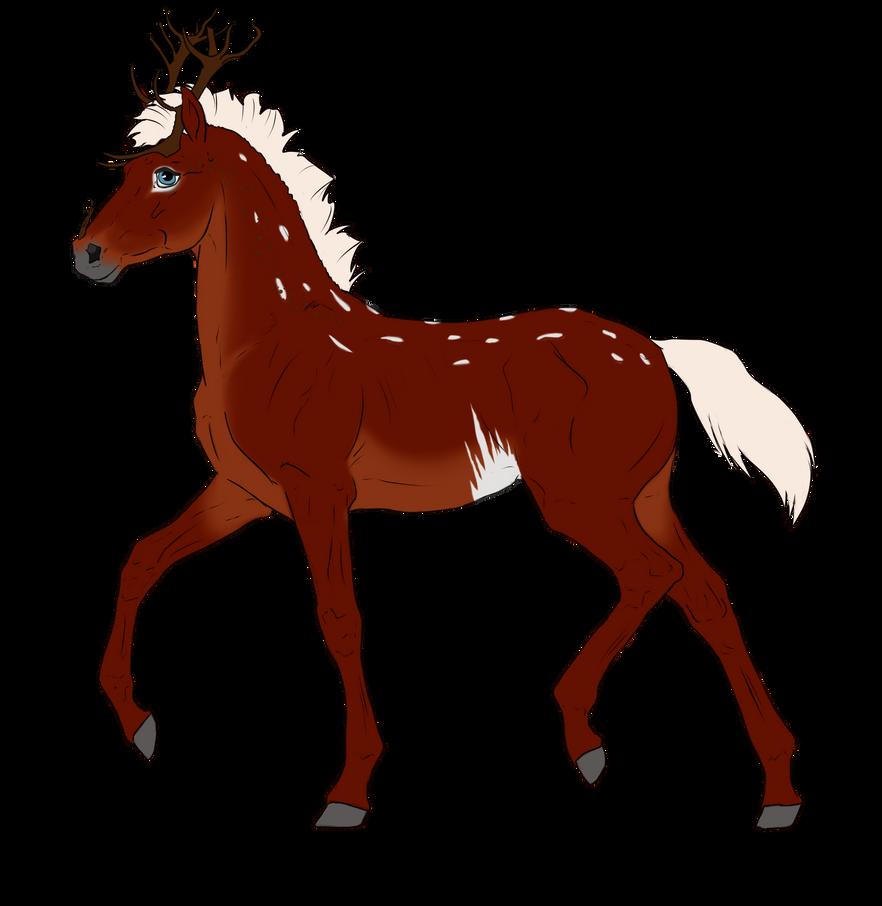 N2937 Padro Foal Design by casinuba