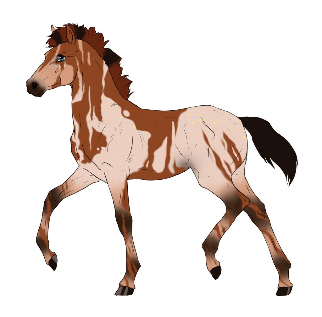 N2902 Padro Foal Design for KaitlyNicole by casinuba