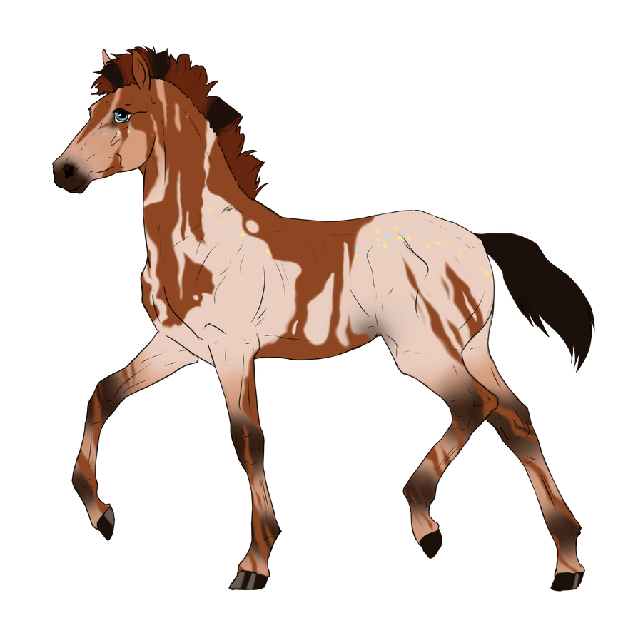 N2902 Padro Foal Design for KaitlyNicole by casinuba