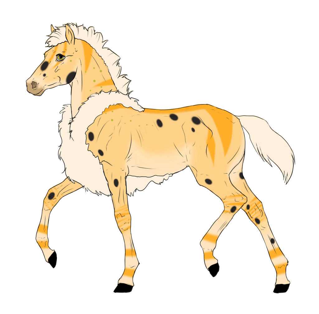 N2915 Padro Foal Design for KaitlyNicole by casinuba