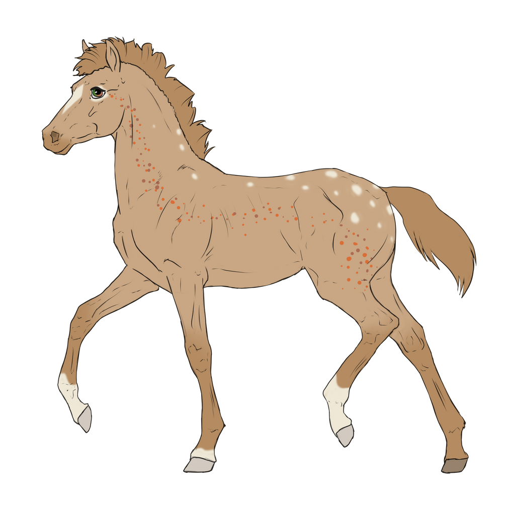 N2932 Padro Foal Design for MistMasquerade by casinuba
