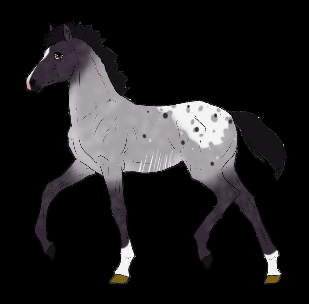 N3001 Padro Foal Design for DarkestNation by casinuba