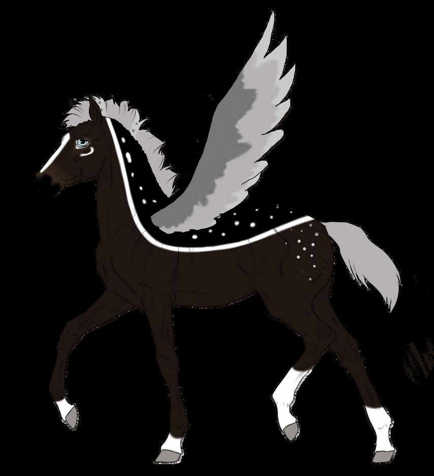 N2993 Padro Foal Design by casinuba