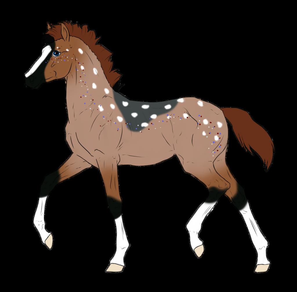 N2996 Padro Foal Design by casinuba