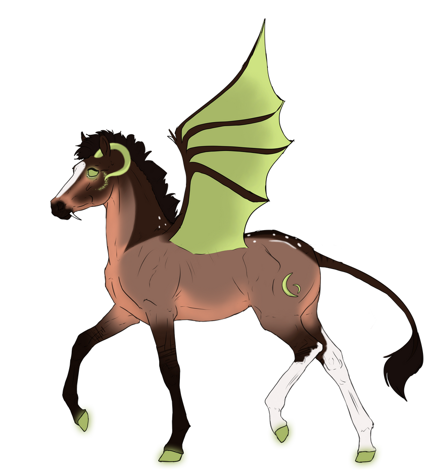 N2999 Padro Foal Design by casinuba