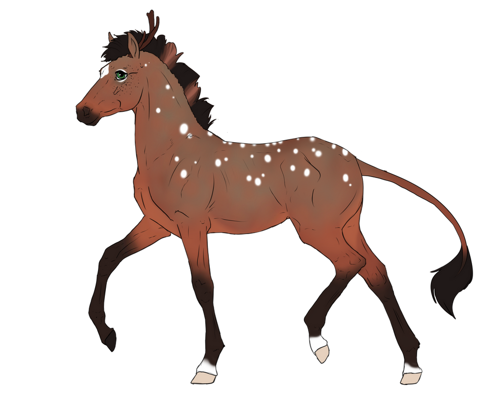 N3066 Padro Foal Design for mylastaccount by casinuba
